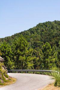 Winding road in Geres Portugal