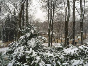 Lazienki Park in Warsaw, Poland on a very snowy day