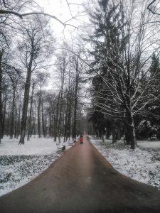 Snowy path at Lazienki Park in Warsaw Poland