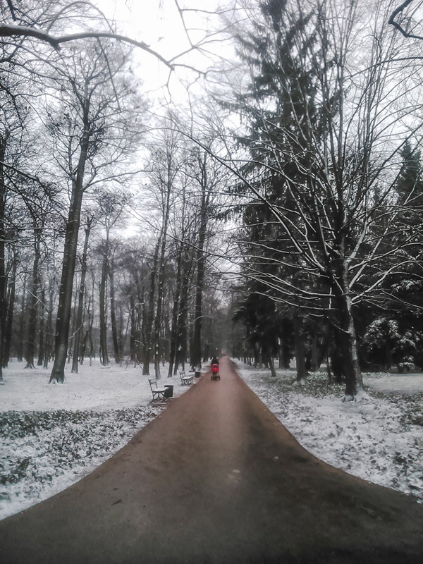 Snowy path at Lazienki Park in Warsaw Poland