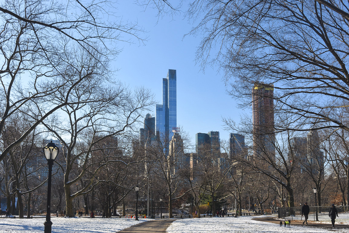 Central Park during the winter facing New York City skyscrapers