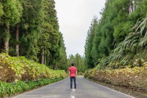 The Azores Island remain as one of the most magical places to visit in Portugal