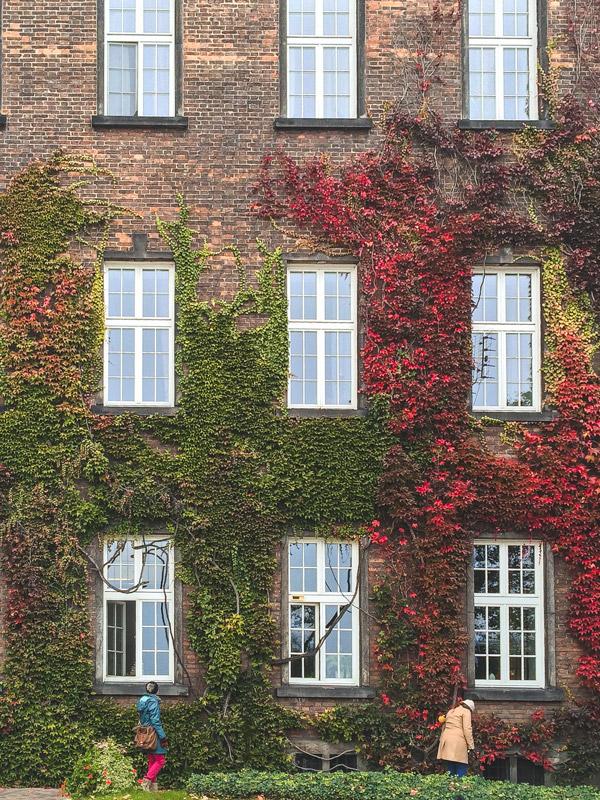 Colorful Autumn Leaves in Wawel Castle Krakow