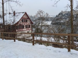 Winter fairytale in the Switzerland Rhein Fall