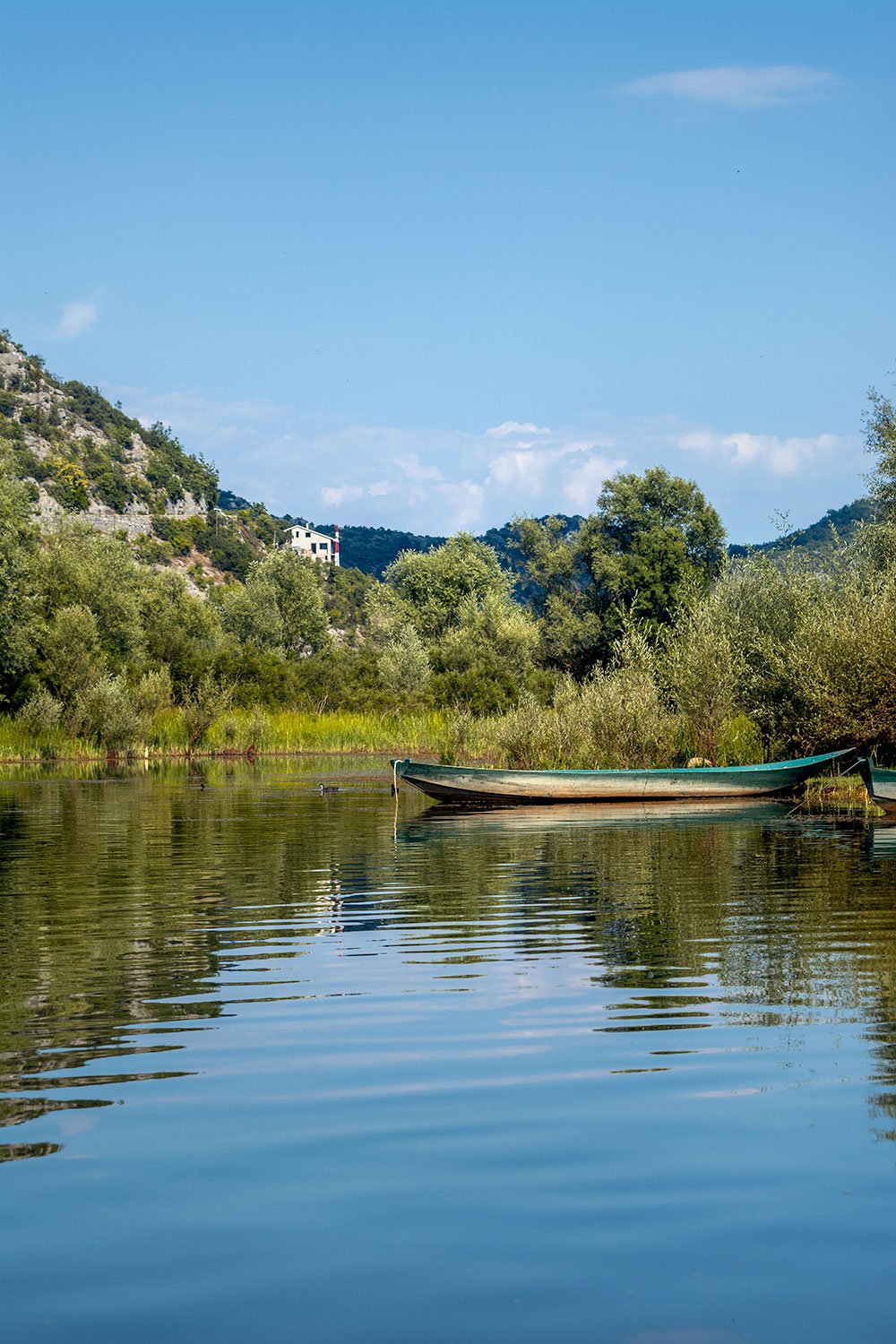 Charming views from the Crnojević river in Montenegro