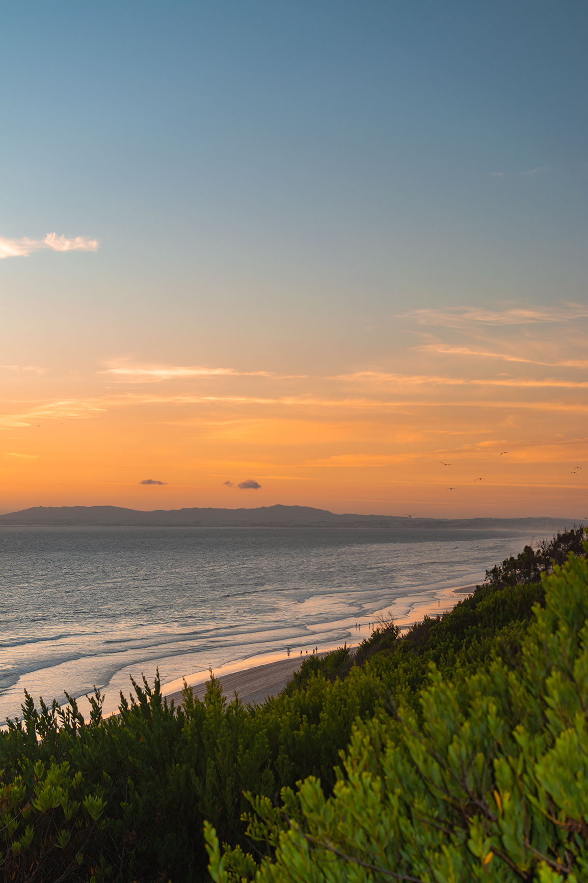 Sunset at Praia da Adiça, near Lisbon: Green vegetation, a calm sea, and an orange sunset over the Atlantic ocean