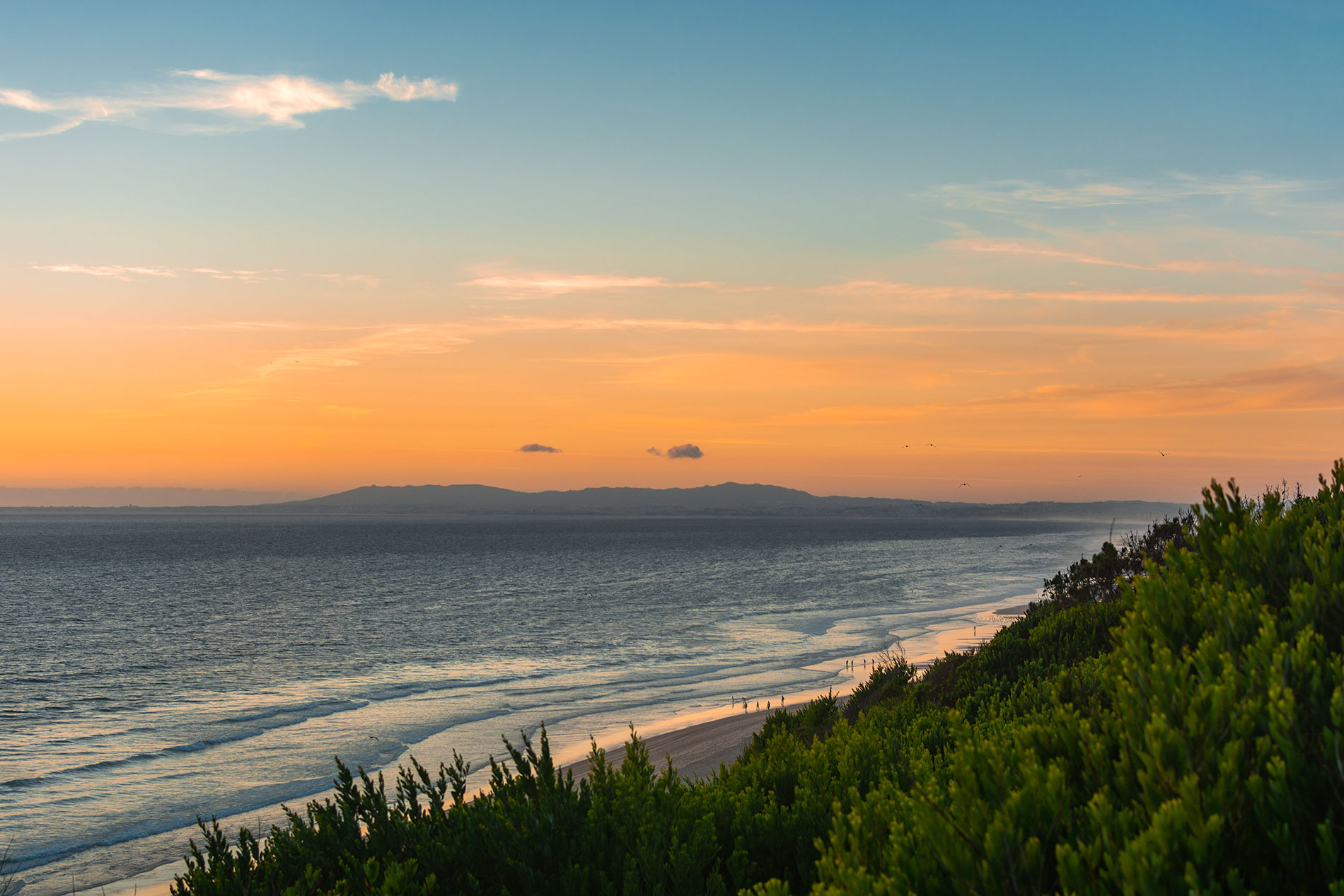 Praia da Adiça: Green vegetation, a calm sea, and an orange sunset over the Atlantic ocean