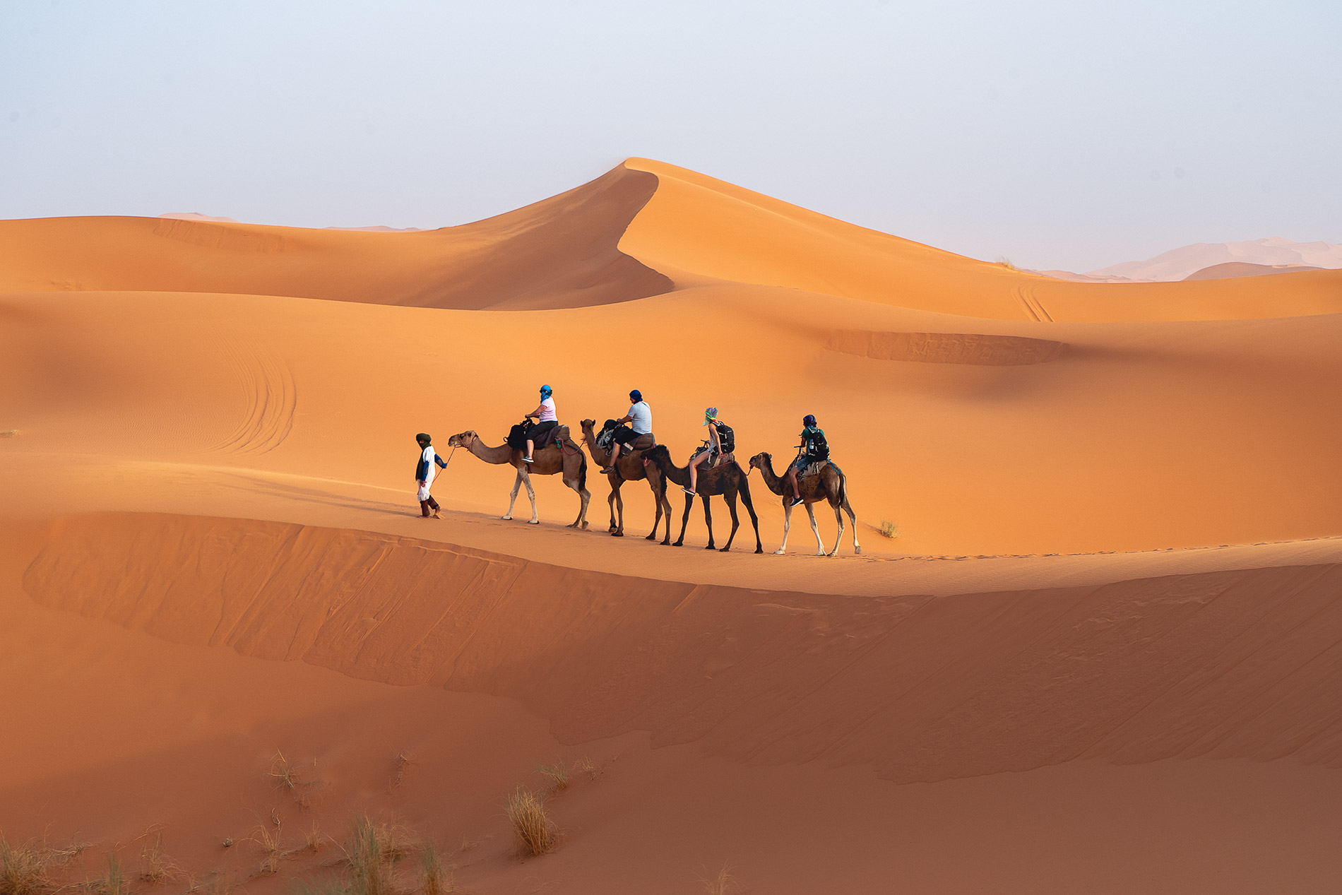 Camel riding in the Erg Chebbi Dunes in Morocco