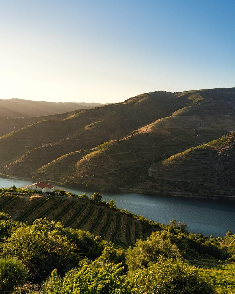 We truly believe the Douro Valley is one of the most beautiful regions in the world