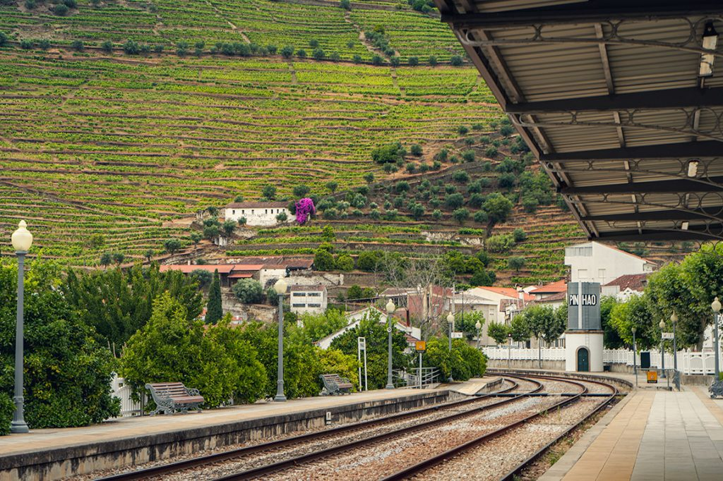 Traveling from Porto to the Douro Valley by train is one of the most beautiful and affordable ways to visit the region