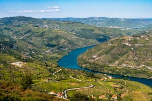 The Douro Valley is filled with stunning views - it's hard not to stop at every turn to enjoy the views